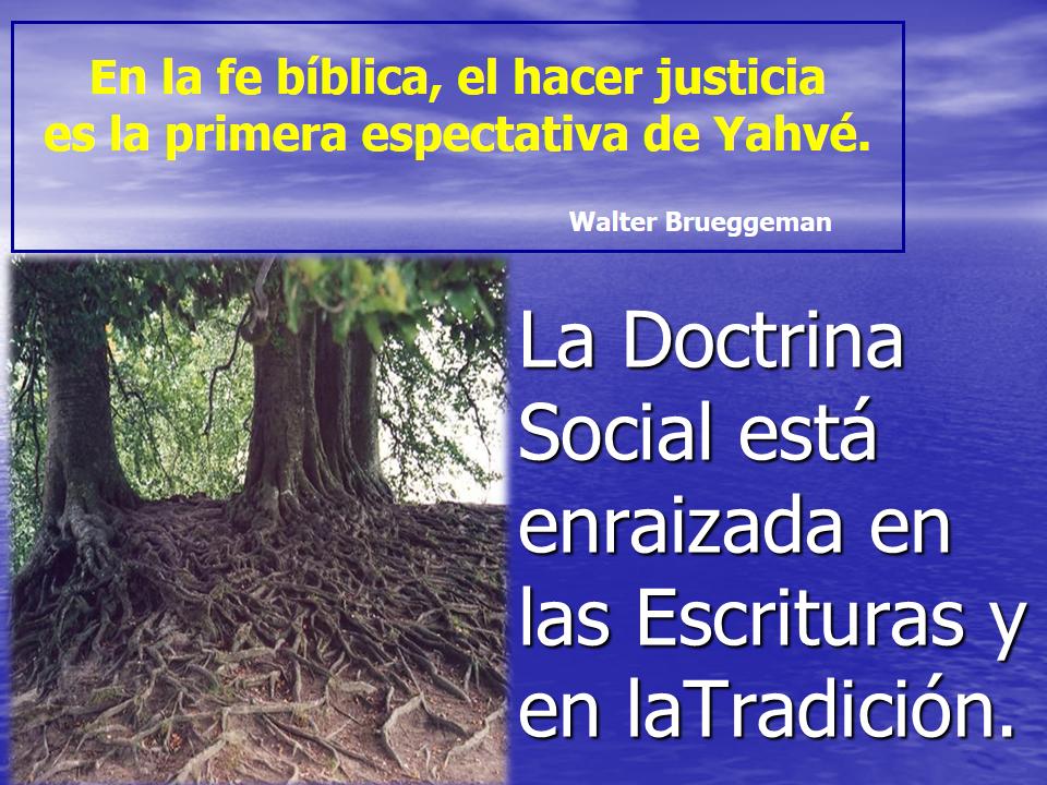 Social Catolica